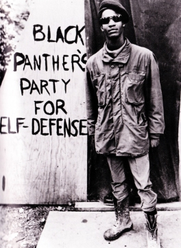 BLACK PANTHER'S PARTY FOR SELF-DEFENSE